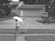 July Rains